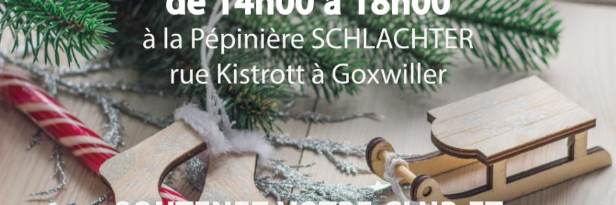 Vente de sapins de Noël – Rdv le 12 décembre 2020