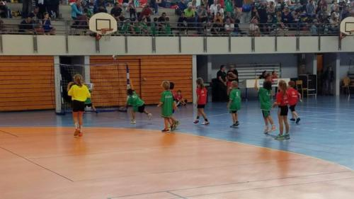 UHB-Journee-ecole-de-handball-13-10-2019 (38)