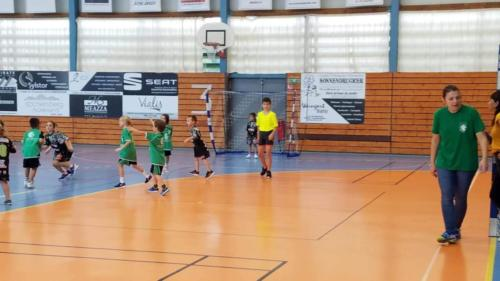 UHB-Journee-ecole-de-handball-13-10-2019 (47)
