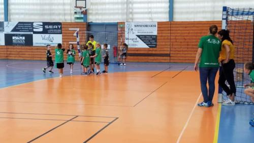 UHB-Journee-ecole-de-handball-13-10-2019 (60)