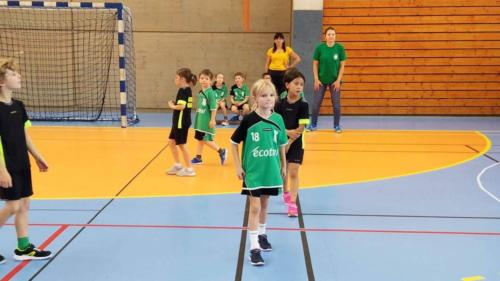 UHB-Journee-ecole-de-handball-13-10-2019 (71)