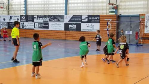 UHB-Journee-ecole-de-handball-13-10-2019 (77)