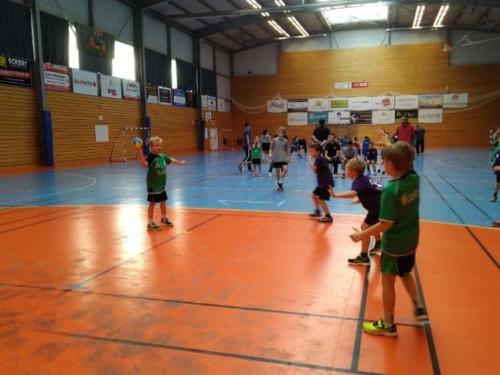 UHB-Journee-ecole-de-handball-24-11-2019 Molsheim (15)