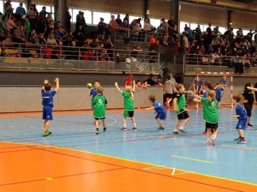UHB-Journee-ecole-de-handball-24-11-2019 Molsheim (22)