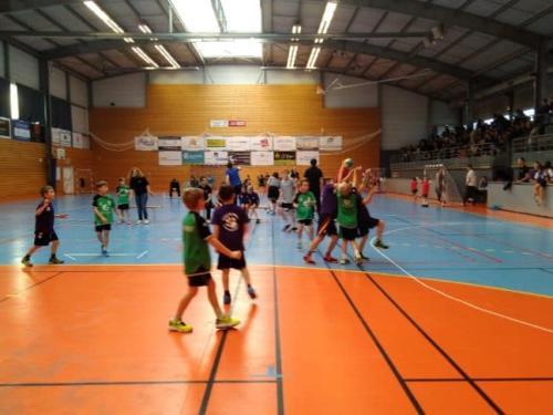 UHB-Journee-ecole-de-handball-24-11-2019 Molsheim (30)