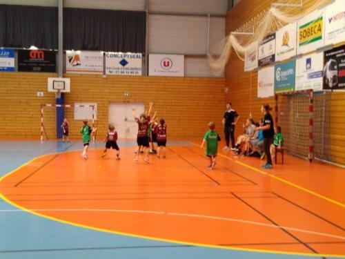 UHB-Journee-ecole-de-handball-24-11-2019 Molsheim (62)