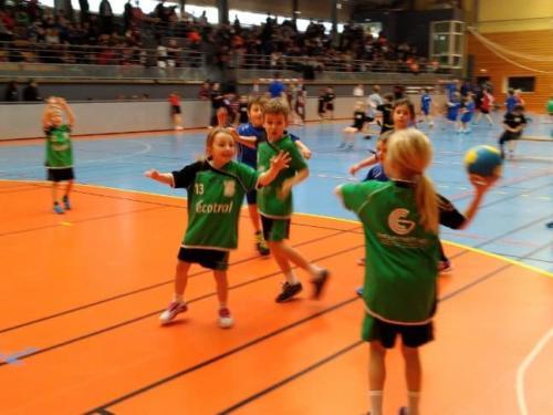 UHB-Journee-ecole-de-handball-24-11-2019 Molsheim (64)