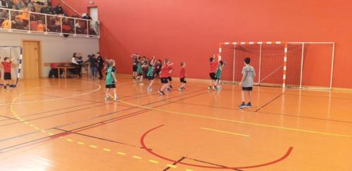 UHB-Journee-Ecole-de-Handball-26-01-2020 Obernai (15)