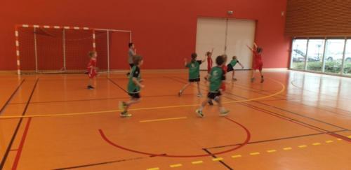 UHB-Journee-Ecole-de-Handball-26-01-2020 Obernai (17)