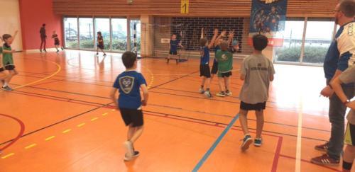 UHB-Journee-Ecole-de-Handball-26-01-2020 Obernai (22)