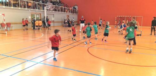 UHB-Journee-Ecole-de-Handball-26-01-2020 Obernai (24)