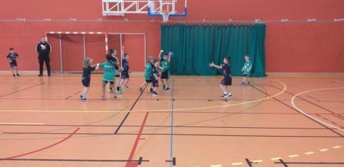 UHB-Journee-Ecole-de-Handball-26-01-2020 Obernai (28)