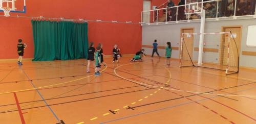 UHB-Journee-Ecole-de-Handball-26-01-2020 Obernai (33)