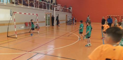 UHB-Journee-Ecole-de-Handball-26-01-2020 Obernai (34)