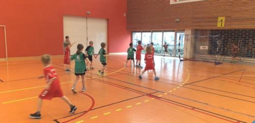 UHB-Journee-Ecole-de-Handball-26-01-2020 Obernai (7)