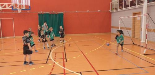 UHB-Journee-Ecole-de-Handball-26-01-2020 Obernai (9)